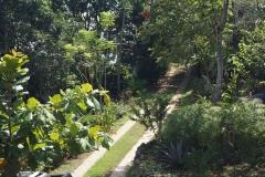 Philia driveway
